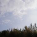 20090428(sky)
