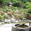 20090531(茶会3)
