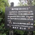 20090613(アポロ2)