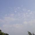 20090615(sky)