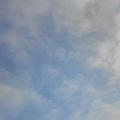 20100305(sky)