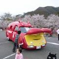 20070407(かば車)