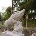 20070503(狛猪1)