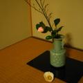20070117(茶花)